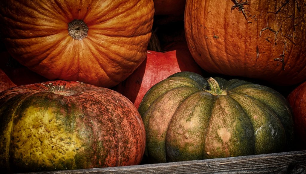 Alimento estrella del otoño: La Calabaza
