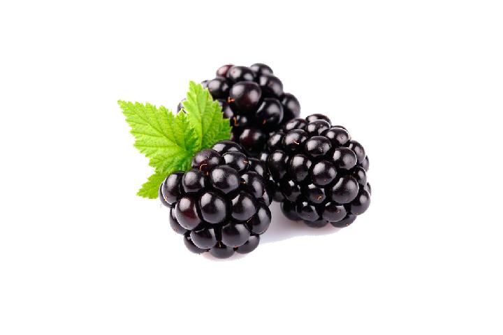 Черника | Exquisite Fruits